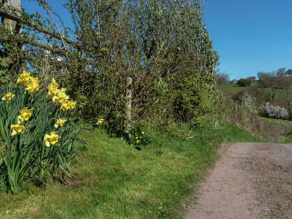 Ferienhaus Llanilid Dau Rye Barn (223554), Trecastle, Mid Wales, Wales, Grossbritannien, Bild 15