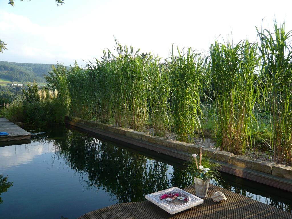 Ferienwohnung Wohlfühlen und entspannen in Luxuriöser Villa in Bad Pyrmont (254946), Bad Pyrmont, Weserbergland (Niedersachsen), Niedersachsen, Deutschland, Bild 21