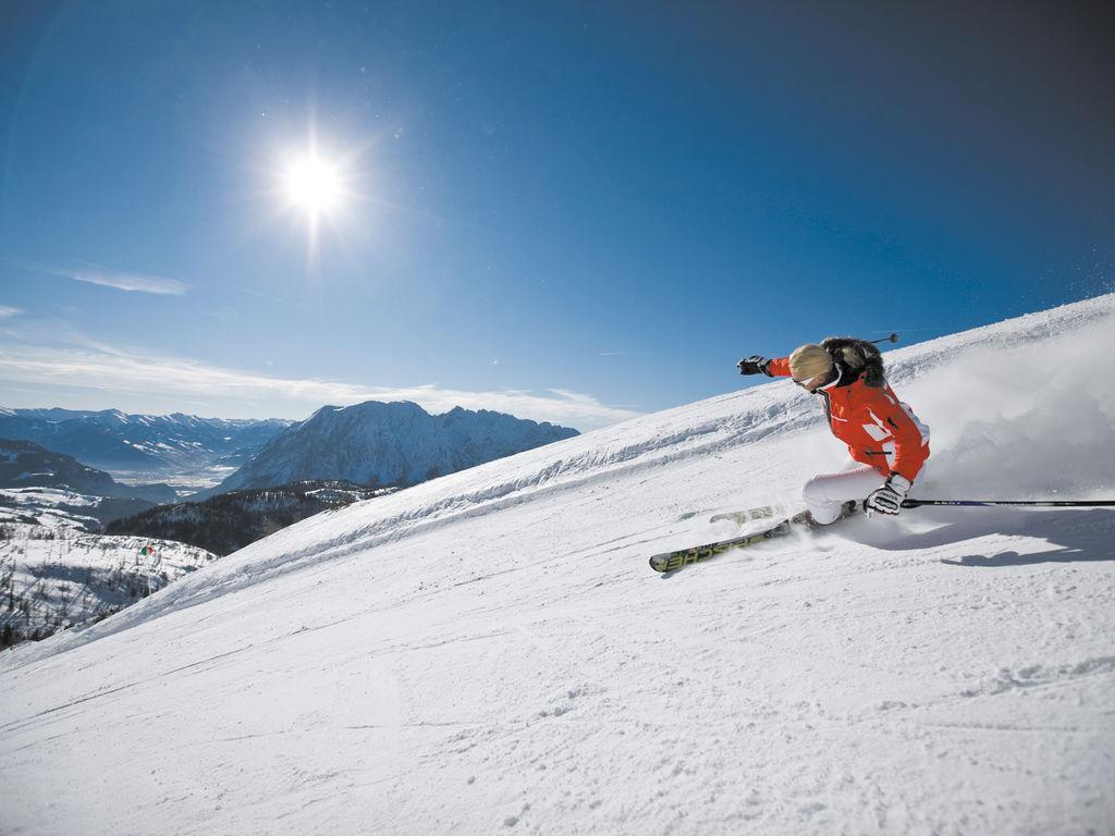 Ferienwohnung Alpenroos (224378), Bad Mitterndorf, Ausseerland-Salzkammergut, Steiermark, Österreich, Bild 26