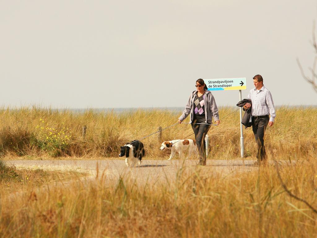Ferienwohnung Gehobene Ferienwohnung mit Meerblick in Cadzand-Bad Zealand (224436), Cadzand-Bad, , Seeland, Niederlande, Bild 17