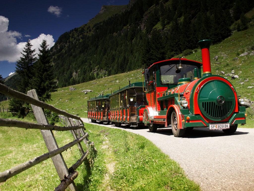 Ferienwohnung Moderne Ferienwohnung in Skigebietsnähe in Oberdorf (254224), Rennweg, Katschberg-Rennweg, Kärnten, Österreich, Bild 21