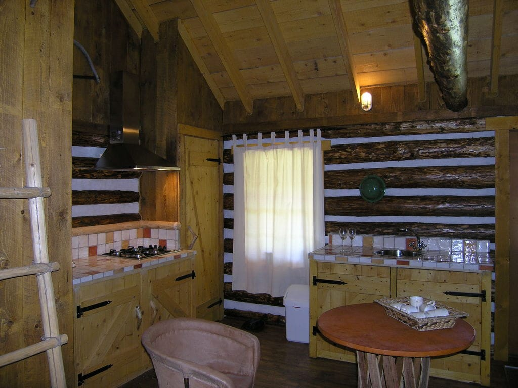 Ferienhaus Amerikaanse Blokhut (236452), Den Ham OV, Salland, Overijssel, Niederlande, Bild 8