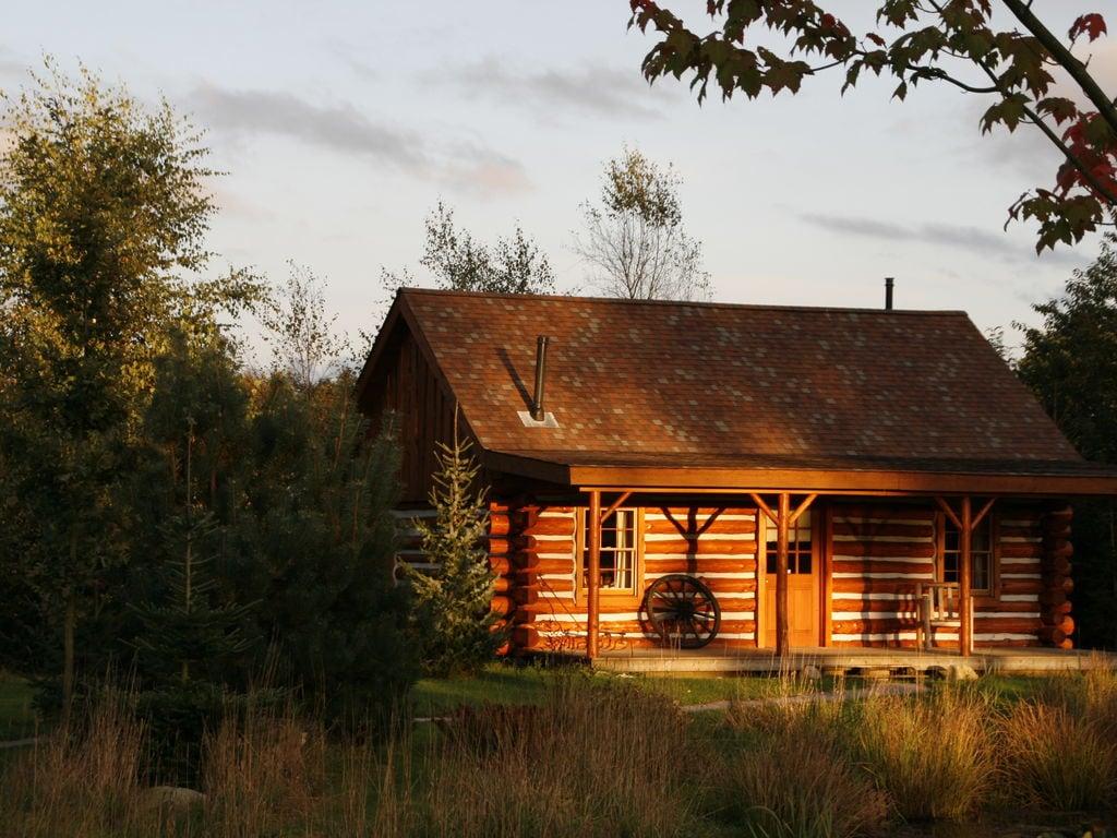 Ferienhaus Amerikaanse Blokhut (236452), Den Ham OV, Salland, Overijssel, Niederlande, Bild 3