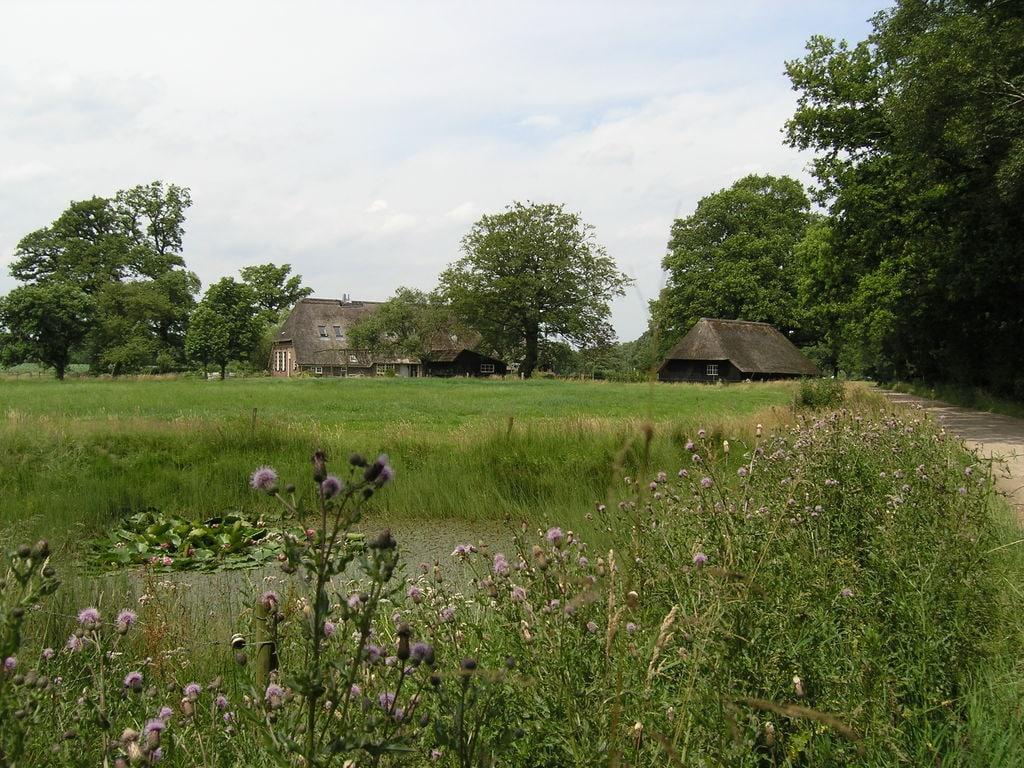 Ferienhaus Amerikaanse Blokhut (236452), Den Ham OV, Salland, Overijssel, Niederlande, Bild 22