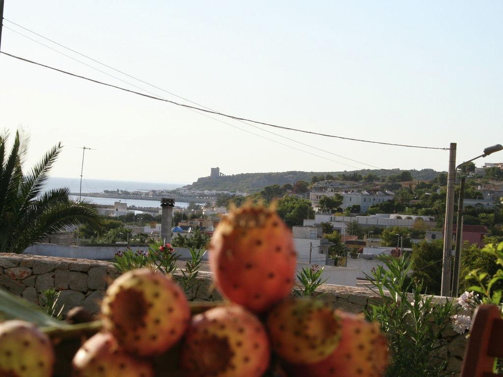 Ferienhaus Vornehmes Ferienhaus bei Salento mit Blick auf die Küste (236361), Pescoluse, Lecce, Apulien, Italien, Bild 24