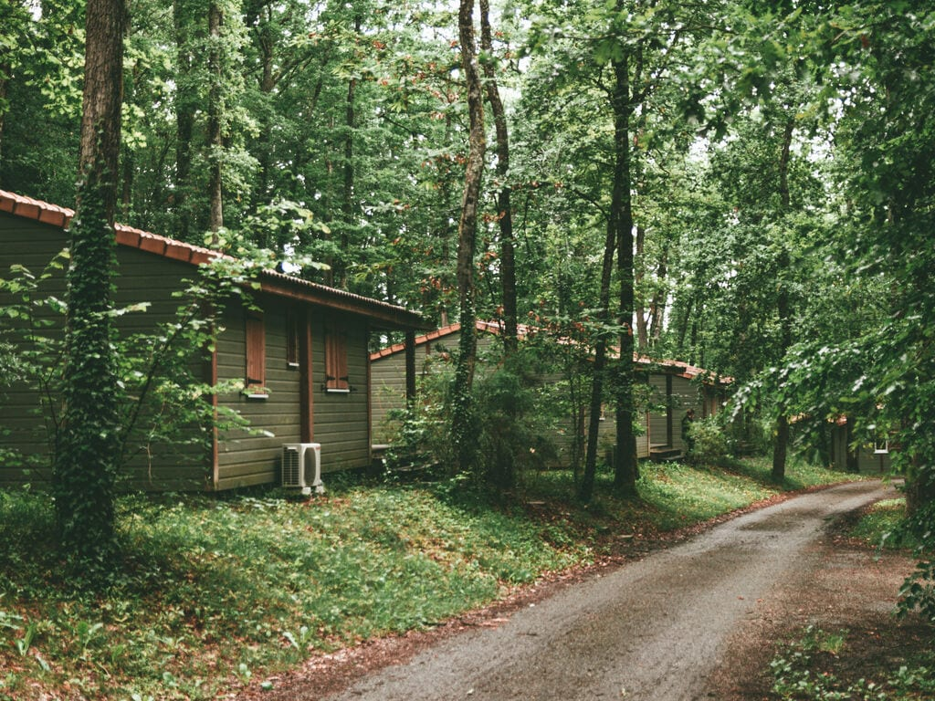 Ferienhaus Attraktives Chalet auf einem Hügel, mit Geschirrspüler (239320), Monclar de Quercy, Tarn-et-Garonne, Midi-Pyrénées, Frankreich, Bild 31