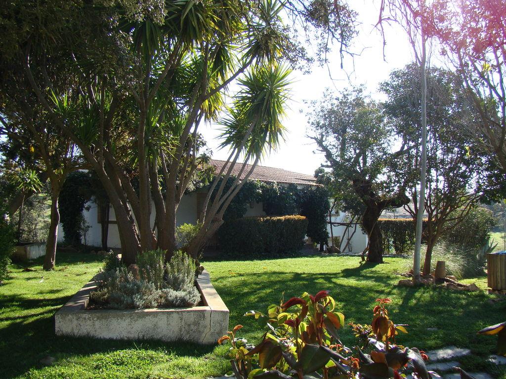 Ferienhaus La Serena (241412), Herrera de Alcentara, Caceres, Extremadura, Spanien, Bild 29