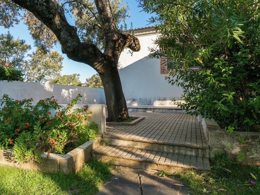 Ferienhaus La Serena (241412), Herrera de Alcentara, Caceres, Extremadura, Spanien, Bild 28