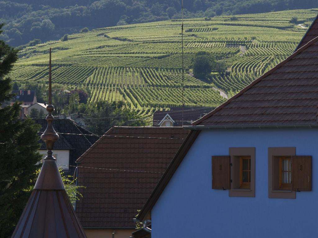 Ferienwohnung Le Clos d'Eguisheim 2 (247994), Eguisheim, Oberelsass, Elsass, Frankreich, Bild 15