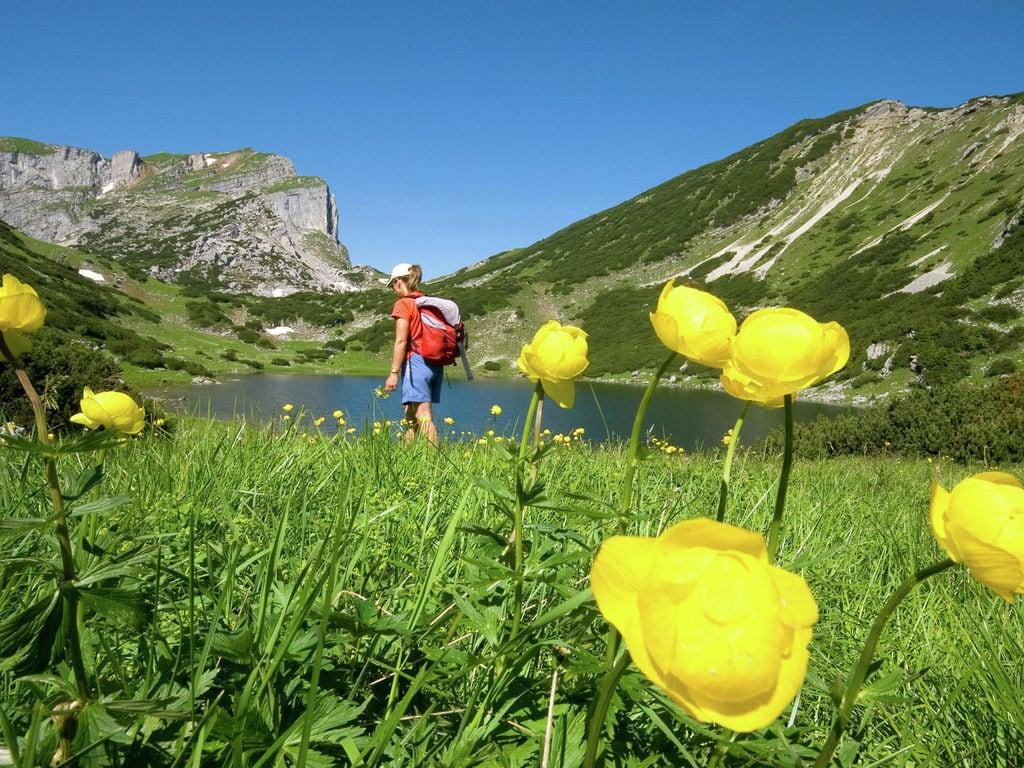 Ferienwohnung Scheffachalm (253714), Reith im Alpbachtal, Alpbachtal & Tiroler Seenland, Tirol, Österreich, Bild 30