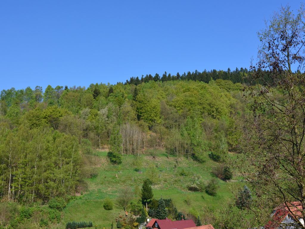 Holiday house Koegel (255555), Schönbrunn, Thuringian Forest, Thuringia, Germany, picture 3