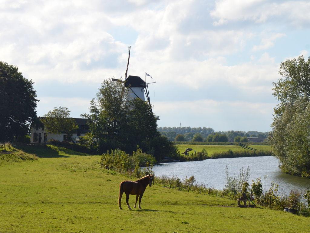 Ferienhaus Authentisches Landhaus in Deil am See (259677), Deil, Rivierenland, Gelderland, Niederlande, Bild 37