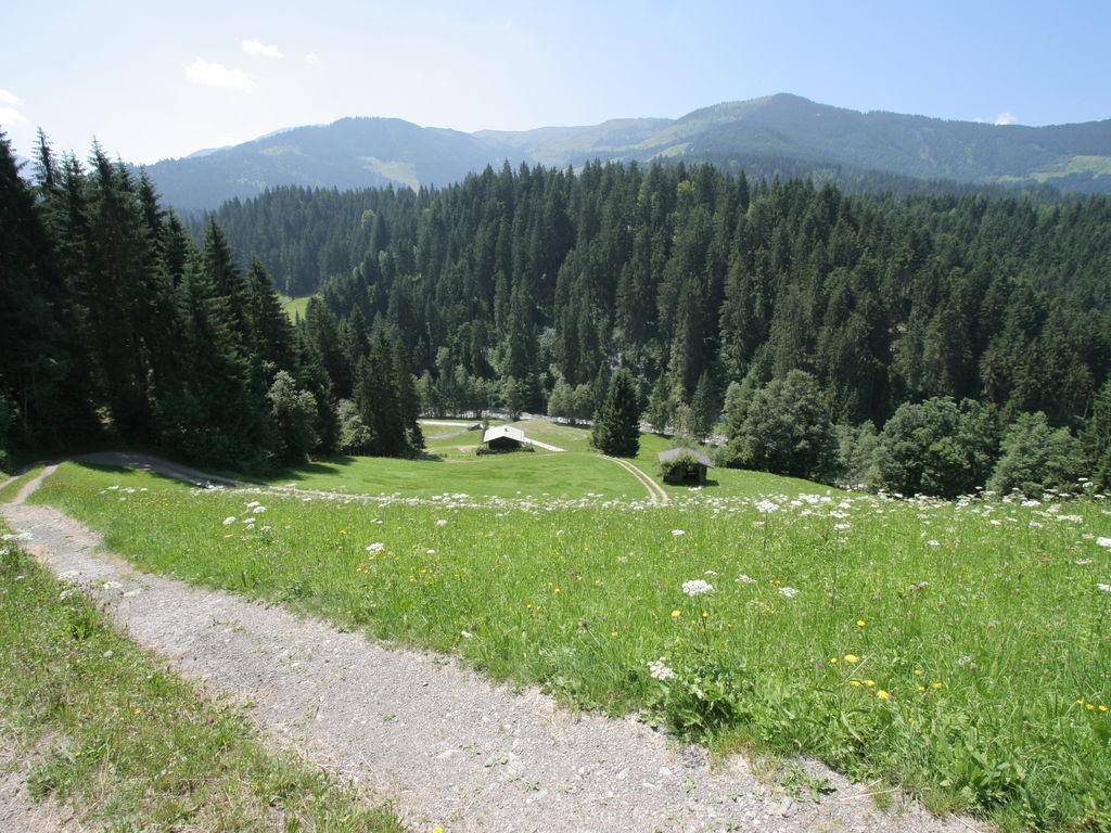 Appartement de vacances Das Schwalbennest (262979), Itter, Hohe Salve, Tyrol, Autriche, image 34
