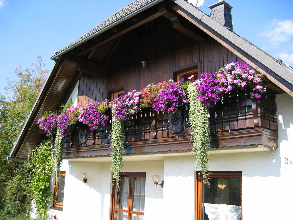 Holiday apartment Schöne Ferienwohnung in Pöhla Sachsen in Skigebietsnähe (420255), Schwarzenberg (DE), The Ore Mountains, Saxony, Germany, picture 14