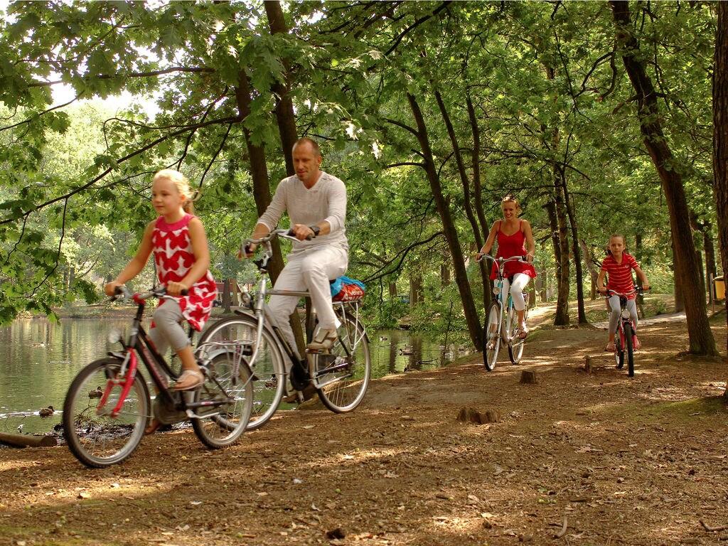 Ferienhaus Bospark 't Wolfsven 2 (264789), Mierlo, , Nordbrabant, Niederlande, Bild 11