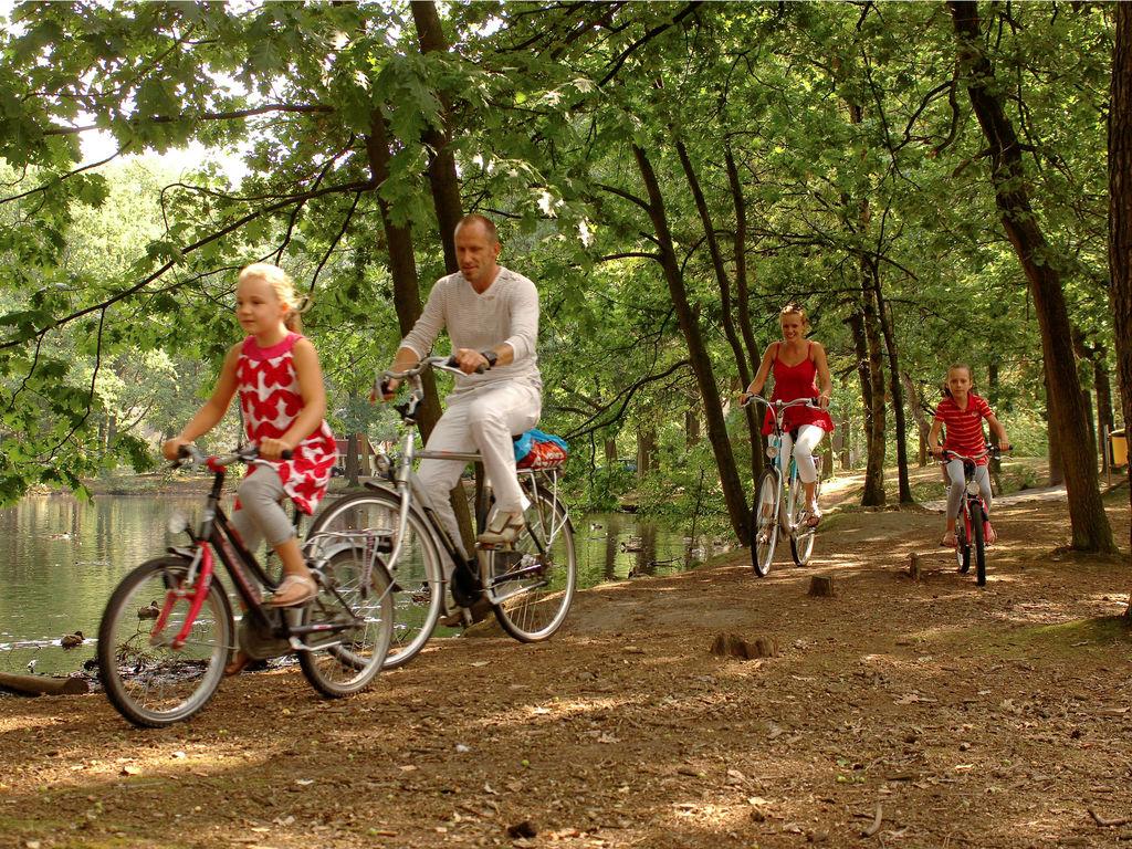 Ferienhaus Bospark 't Wolfsven 4 (264790), Mierlo, , Nordbrabant, Niederlande, Bild 14