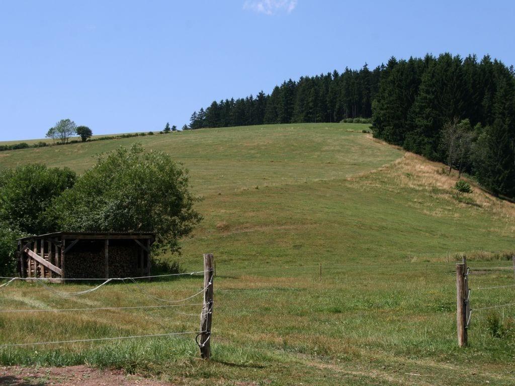 Ferienhaus Gemütliches Ferienhaus in Unterta in der Nähe der Skipisten (270012), St. Georgen (DE), Schwarzwald, Baden-Württemberg, Deutschland, Bild 22