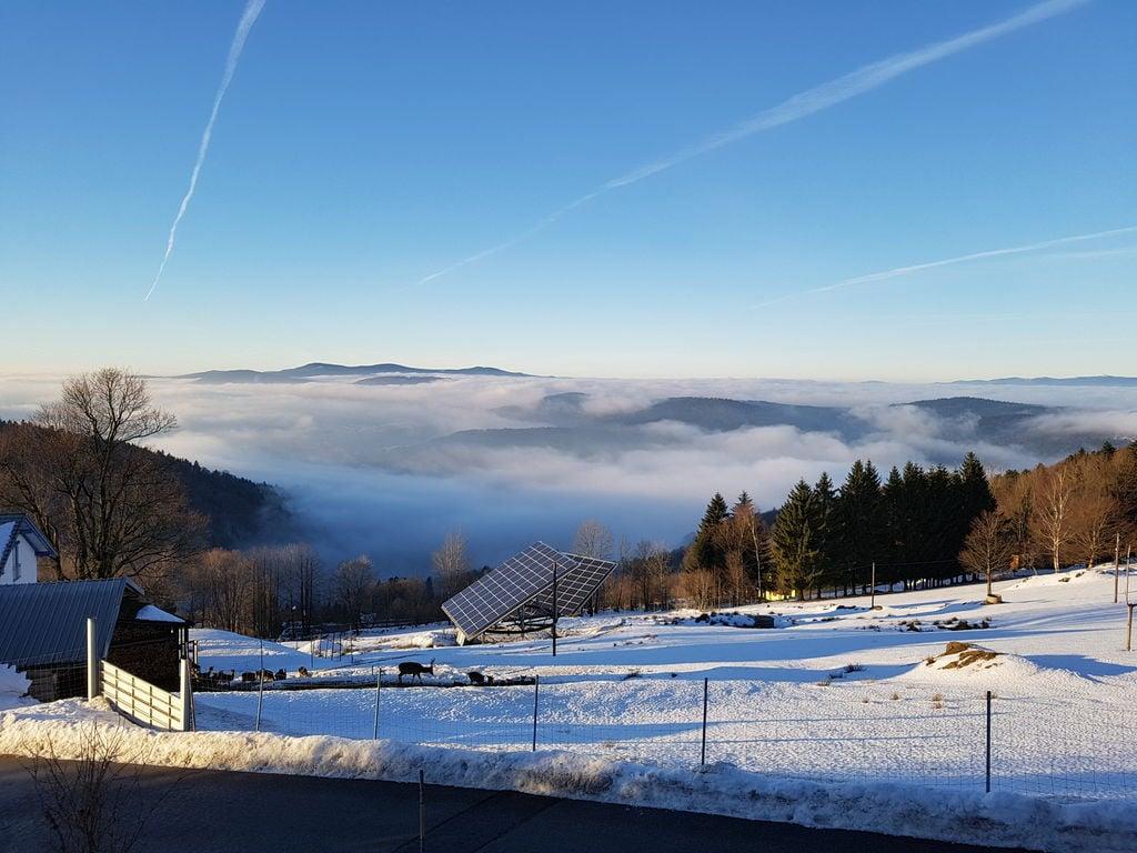 Ferienhaus im Bayerischen Wald mit Terrasse und herrlicher Aussicht (270032), Schöfweg, Bayerischer Wald, Bayern, Deutschland, Bild 2