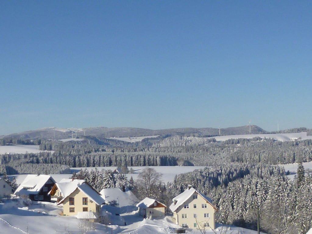 Ferienwohnung Neukirch (270013), Furtwangen, Schwarzwald, Baden-Württemberg, Deutschland, Bild 29