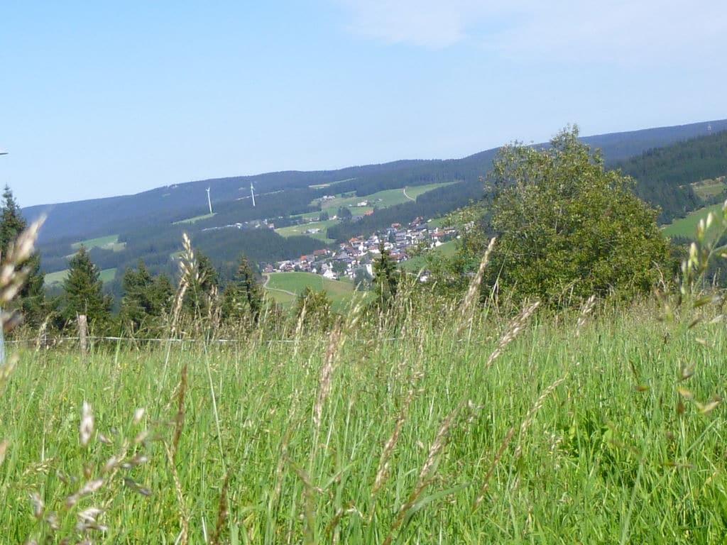 Ferienwohnung Neukirch (270013), Furtwangen, Schwarzwald, Baden-Württemberg, Deutschland, Bild 31