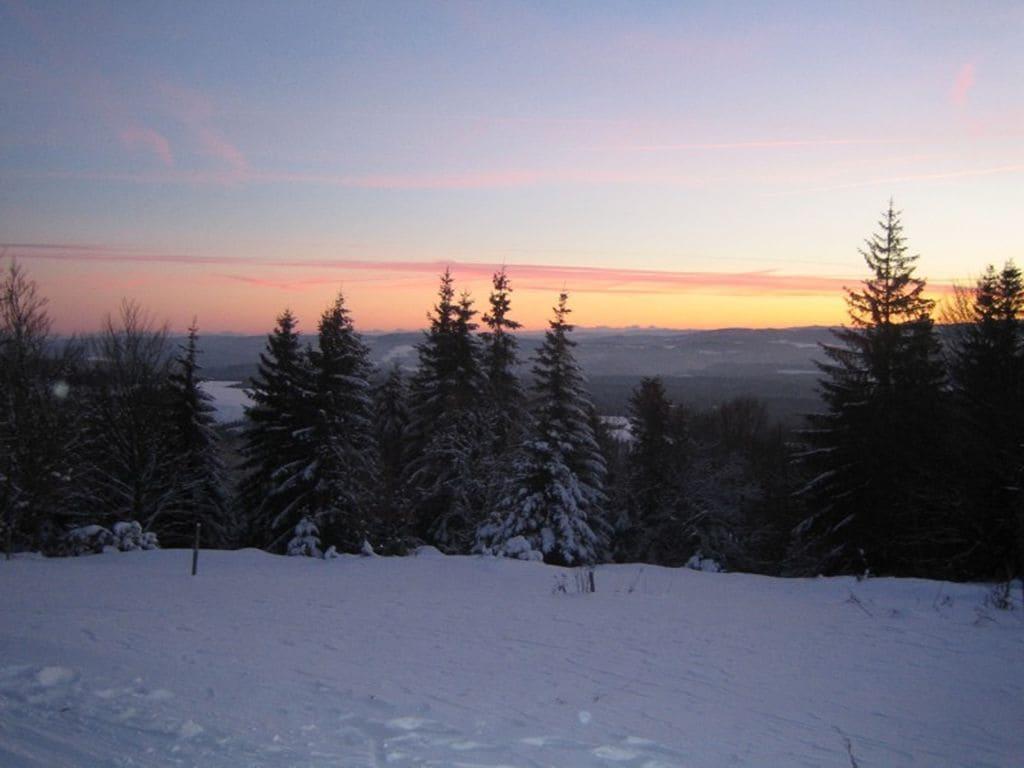 Ferienwohnung Neukirch (270013), Furtwangen, Schwarzwald, Baden-Württemberg, Deutschland, Bild 30
