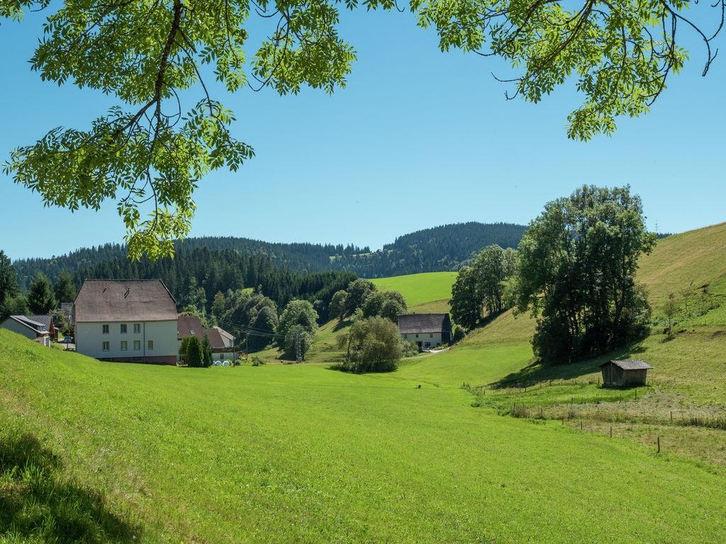 Ferienwohnung Neukirch (270013), Furtwangen, Schwarzwald, Baden-Württemberg, Deutschland, Bild 4