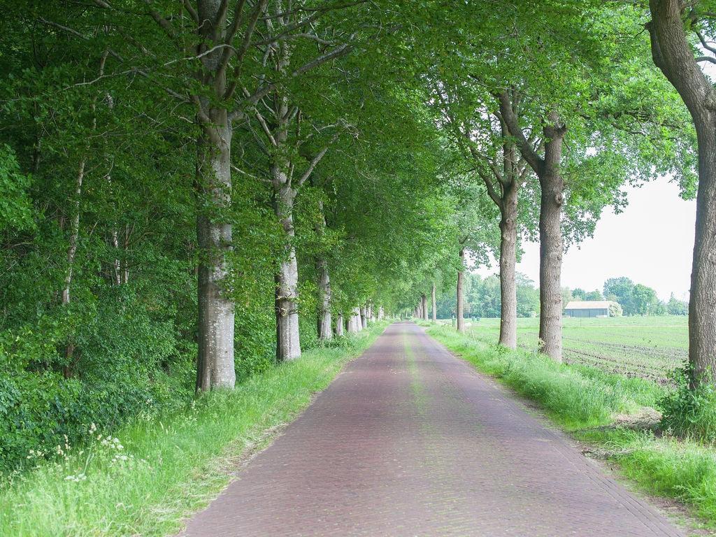 Ferienhaus Idyllischer Bauernhof in Zorgvlied in Waldnähe (270312), Zorgvlied, , Drenthe, Niederlande, Bild 29