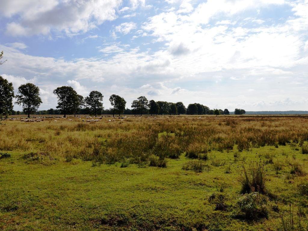Ferienhaus Idyllischer Bauernhof in Zorgvlied in Waldnähe (270312), Zorgvlied, , Drenthe, Niederlande, Bild 32