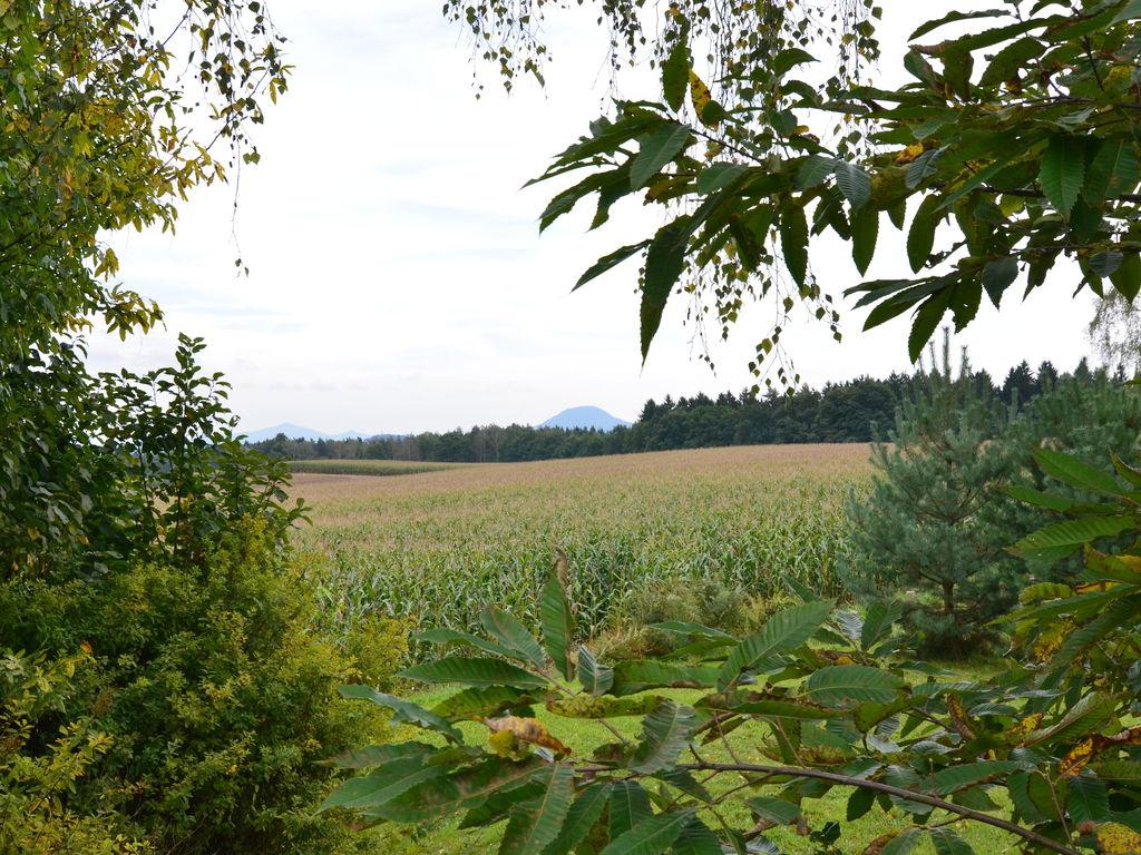 Ferienwohnung Mod. Ferienwohnung in Reinhardtsdorf-Schöna nahe Skipisten (277403), Bad Schandau, Sächsische Schweiz, Sachsen, Deutschland, Bild 2