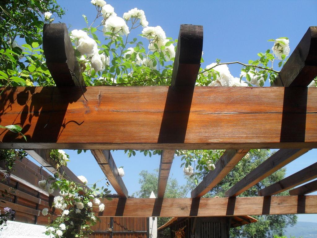 Ferienhaus Cottage auf dem Land mit Garten mit Grill in Ponte De Lima (277709), Ponte de Lima, , Nord-Portugal, Portugal, Bild 21