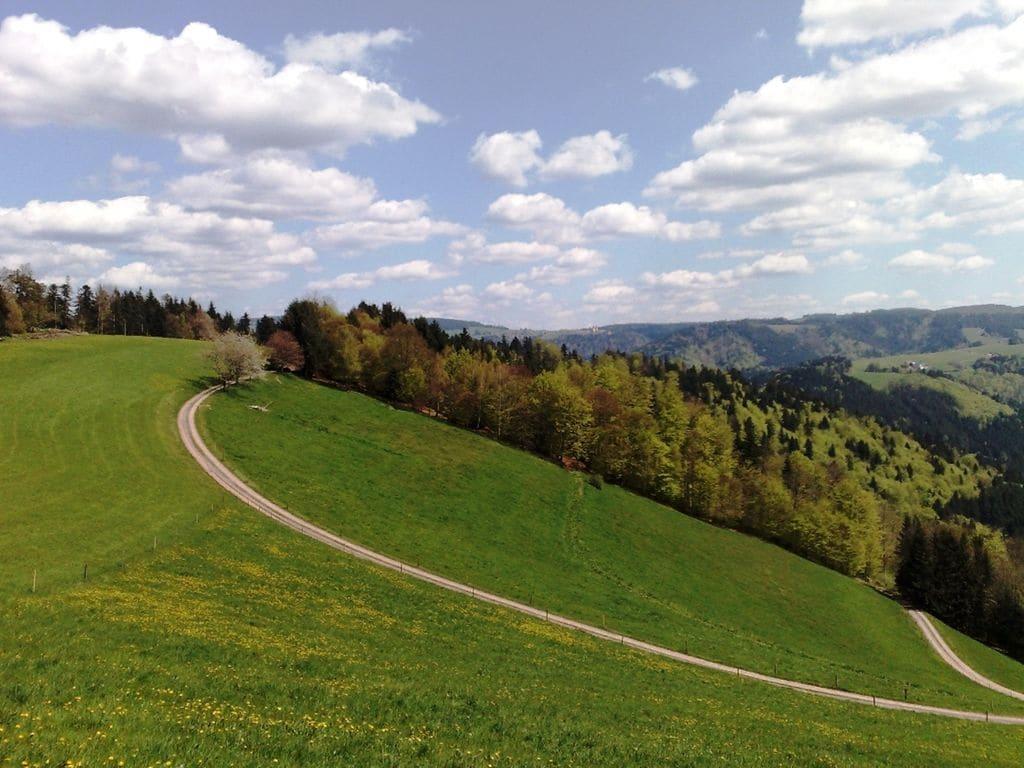 Ferienhaus Hexenhaus (277433), Buchenbach, Schwarzwald, Baden-Württemberg, Deutschland, Bild 21