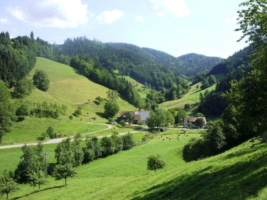 Ferienhaus Hexenhaus (277433), Buchenbach, Schwarzwald, Baden-Württemberg, Deutschland, Bild 22