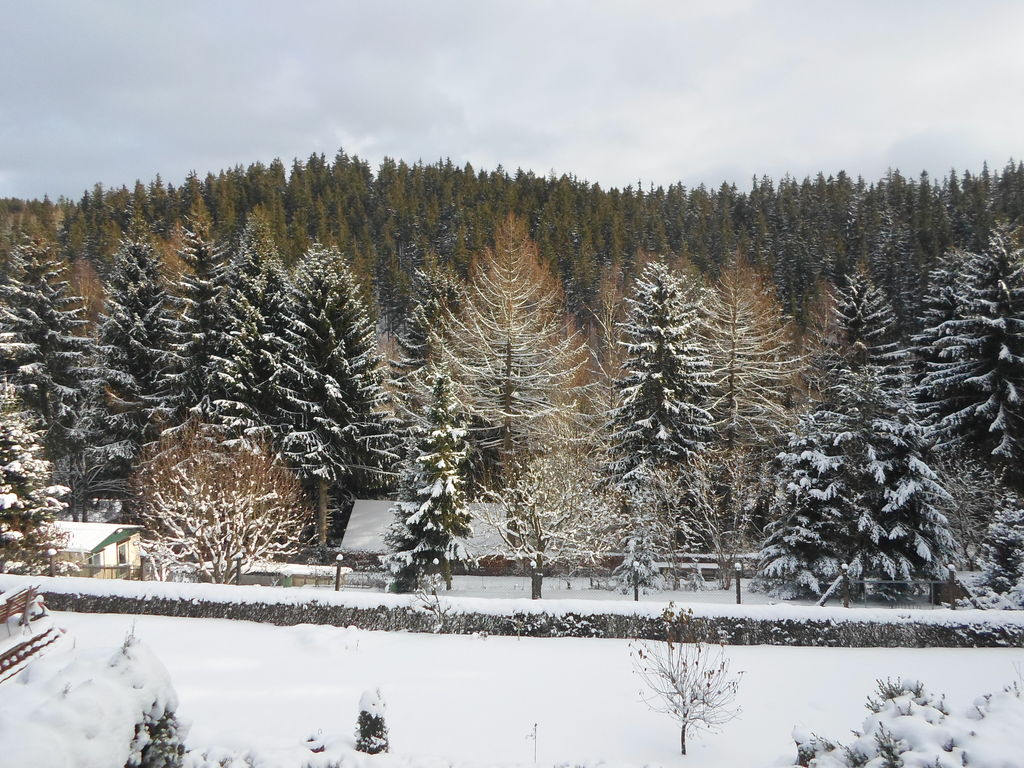 Ferienhaus im Thüringer Wald (294327), Finsterbergen, Thüringer Wald, Thüringen, Deutschland, Bild 28