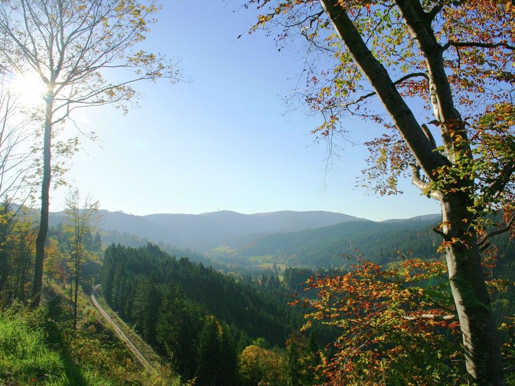 Ferienwohnung Gemütliches Apartment in der Nähe des Skigebiets in Urberg (295058), Dachsberg, Schwarzwald, Baden-Württemberg, Deutschland, Bild 15