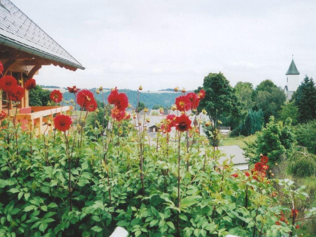Ferienwohnung Gemütliches Apartment in der Nähe des Skigebiets in Urberg (295058), Dachsberg, Schwarzwald, Baden-Württemberg, Deutschland, Bild 6