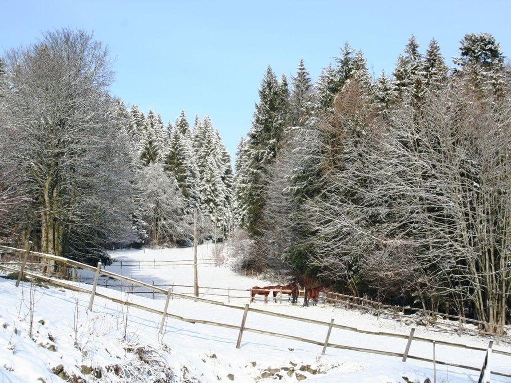 Ferienwohnung Schwarzwaldhaus Pferdeklause (295057), Dachsberg, Schwarzwald, Baden-Württemberg, Deutschland, Bild 22