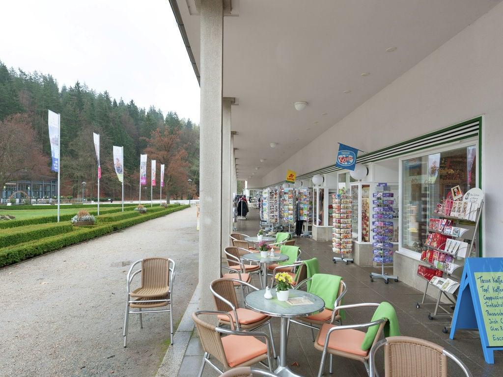 Ferienhaus Prachtvolle Ferienwohnung in Sohl, Deutschland mit Terrasse (297529), Bad Elster, Vogtland (Sachsen), Sachsen, Deutschland, Bild 25