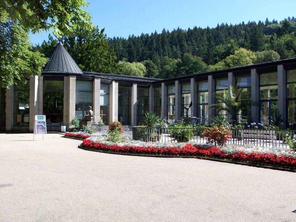 Ferienhaus Prachtvolle Ferienwohnung in Sohl, Deutschland mit Terrasse (297529), Bad Elster, Vogtland (Sachsen), Sachsen, Deutschland, Bild 28