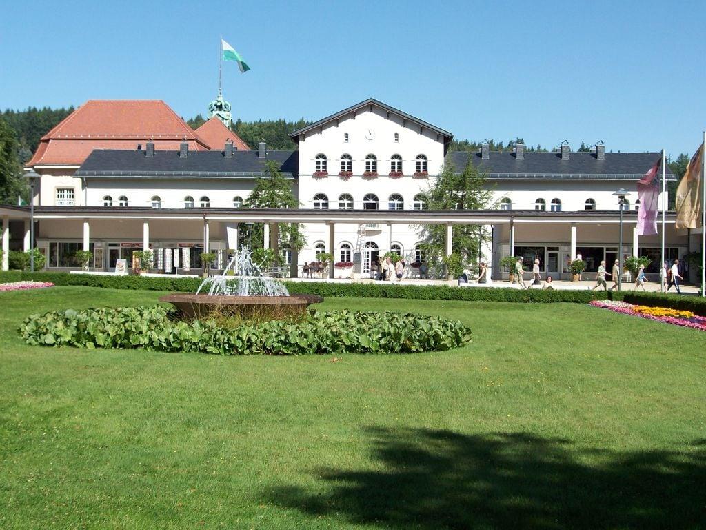 Ferienhaus Prachtvolle Ferienwohnung in Sohl, Deutschland mit Terrasse (297529), Bad Elster, Vogtland (Sachsen), Sachsen, Deutschland, Bild 29