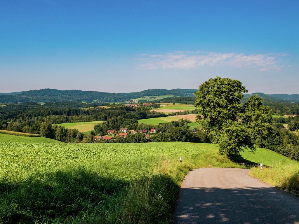 Ferienwohnung Moderne Ferienwohnung in Pilgramsberg nahe den Skipisten (299909), Rattiszell, Bayerischer Wald, Bayern, Deutschland, Bild 30