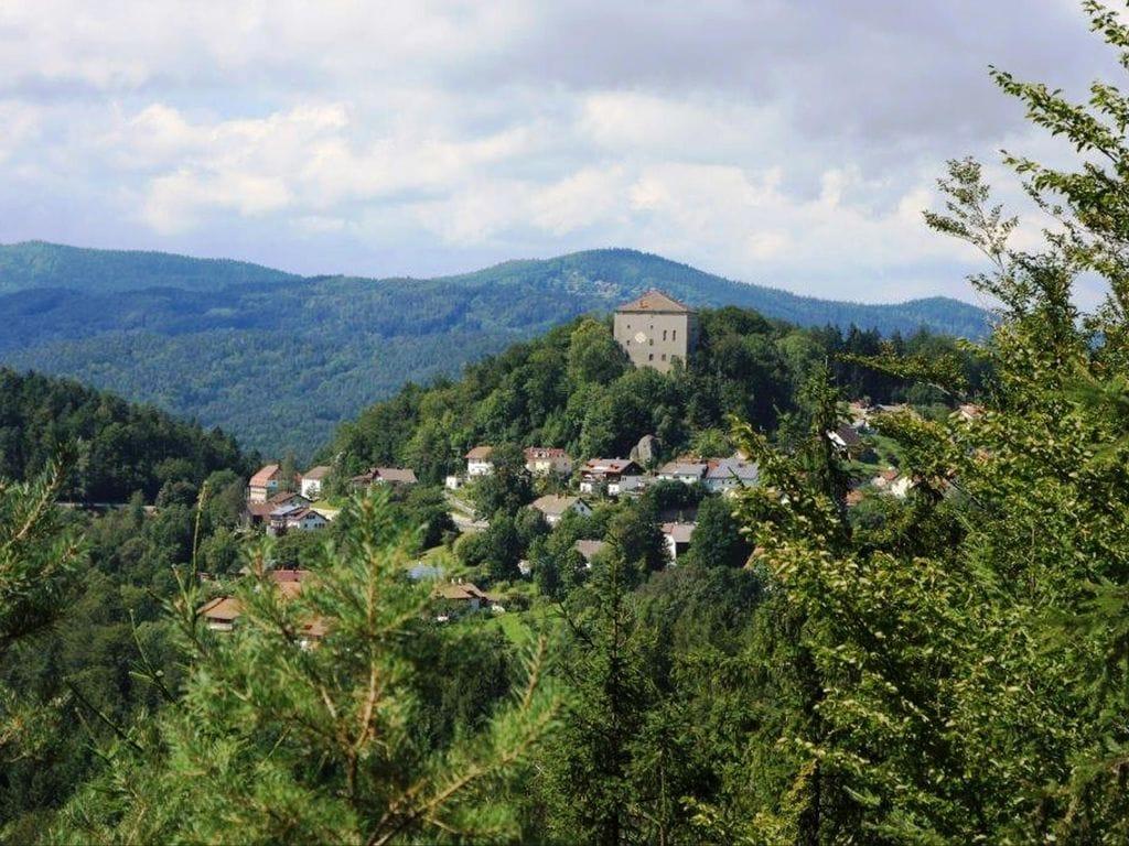 Ferienhaus Im Bayerischen Wald (299907), Saldenburg, Bayerischer Wald, Bayern, Deutschland, Bild 21