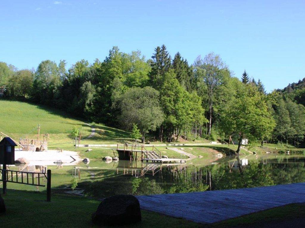 Ferienhaus Im Bayerischen Wald (299907), Saldenburg, Bayerischer Wald, Bayern, Deutschland, Bild 20