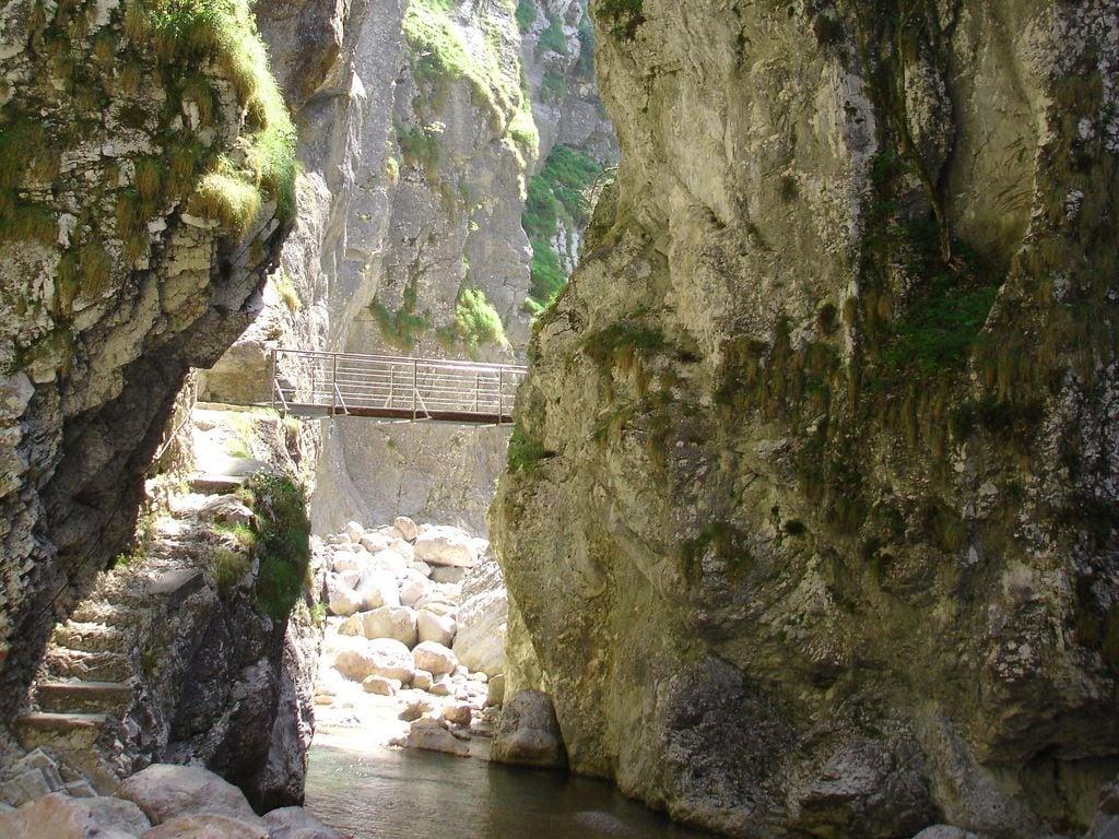 Ferienwohnung Gemütliche Ferienwohnung in Hermagor-Pressegger See mit Pool (301320), Hermagor, Naturarena Kärnten, Kärnten, Österreich, Bild 22