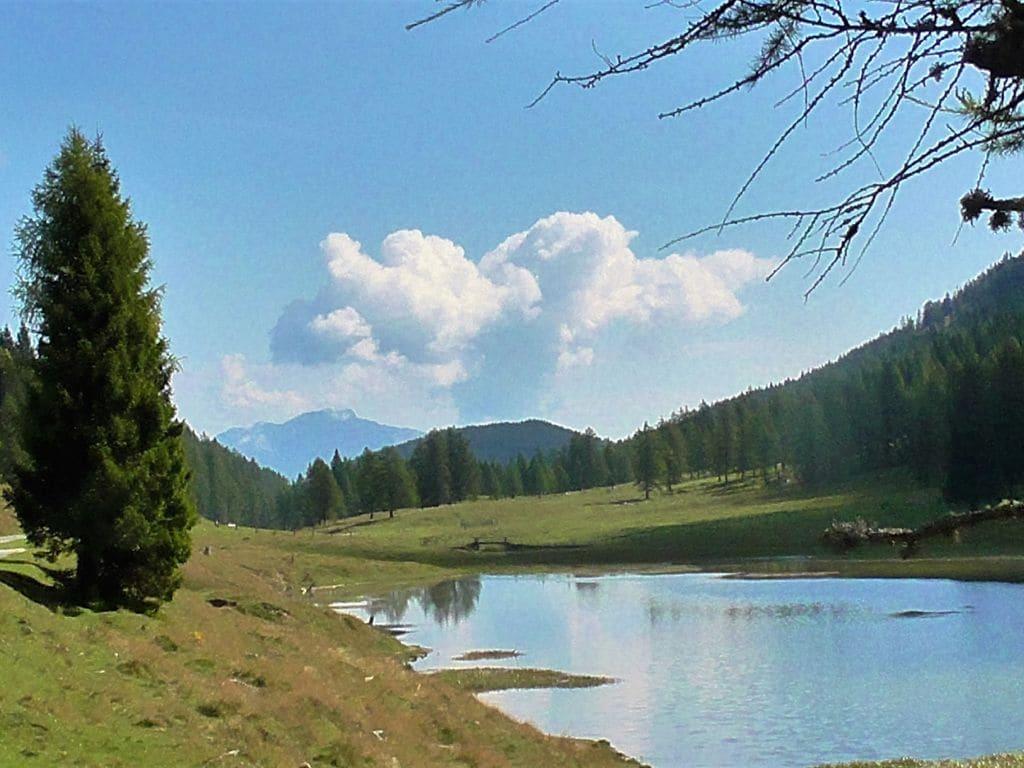 Ferienwohnung Gemütliche Ferienwohnung in Hermagor-Pressegger See mit Pool (301320), Hermagor, Naturarena Kärnten, Kärnten, Österreich, Bild 12