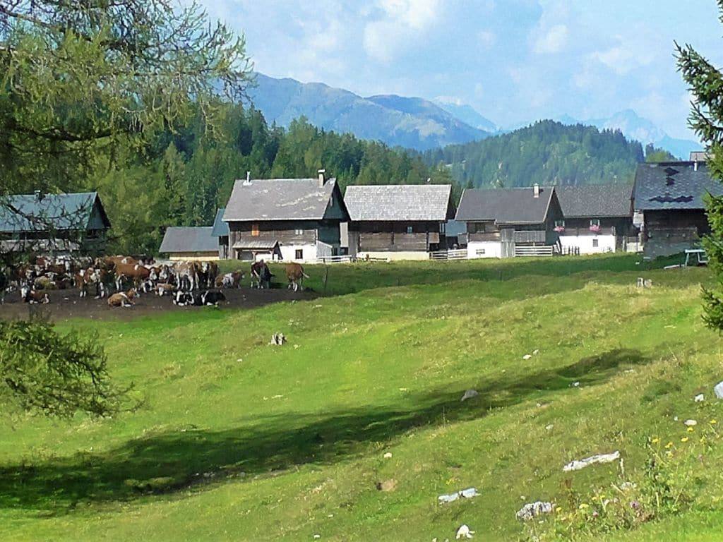 Ferienwohnung Gemütliche Ferienwohnung in Hermagor-Pressegger See mit Pool (301320), Hermagor, Naturarena Kärnten, Kärnten, Österreich, Bild 13