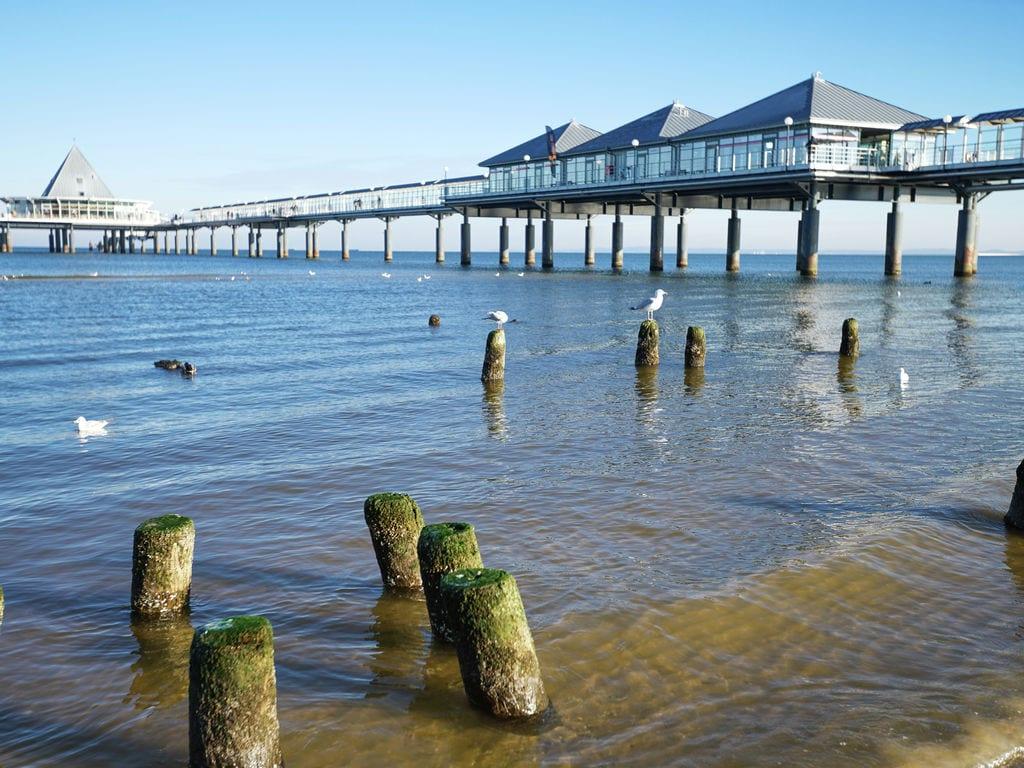 Ferienwohnung 5 km zum Strand Ferienwohnung auf Usedom (305094), Benz, Usedom, Mecklenburg-Vorpommern, Deutschland, Bild 22