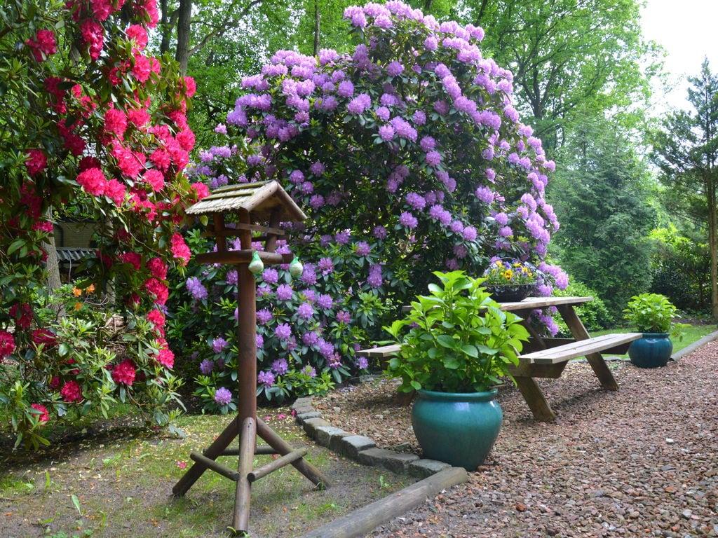 Ferienhaus Luxuriöser Bungalow in Wateren mit Teich (308947), Wateren, , Drenthe, Niederlande, Bild 14