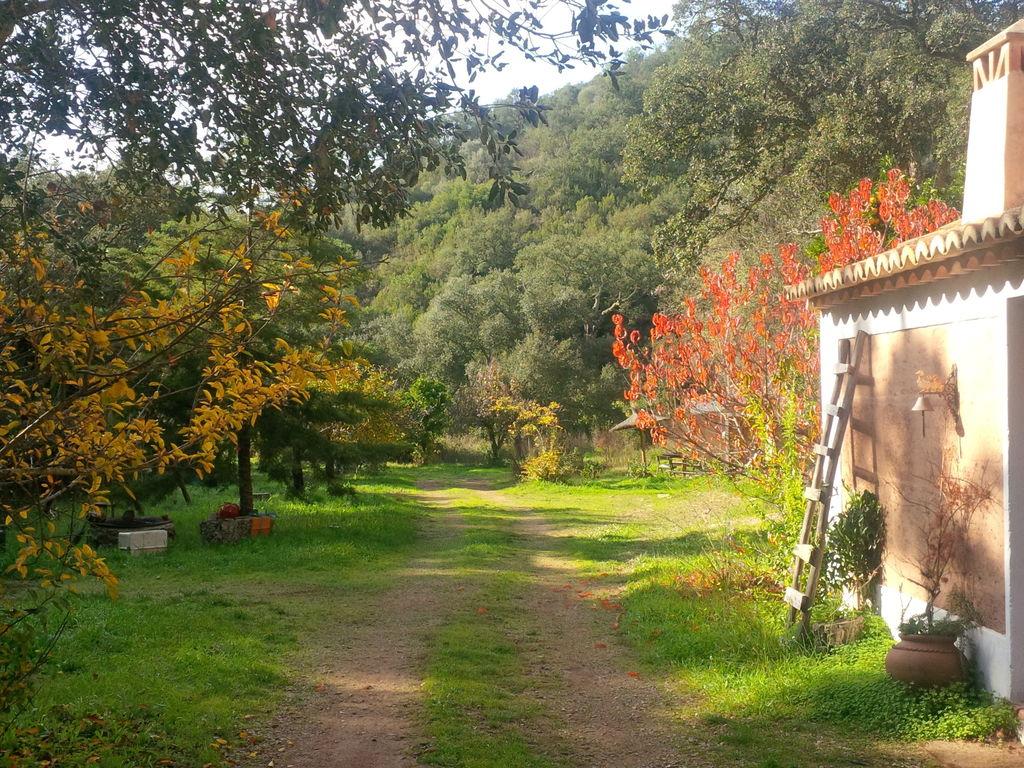Ferienhaus Wunderbares Cottage in São Luís mit Grill (308948), Odemira, Costa Vicentina, Alentejo, Portugal, Bild 6