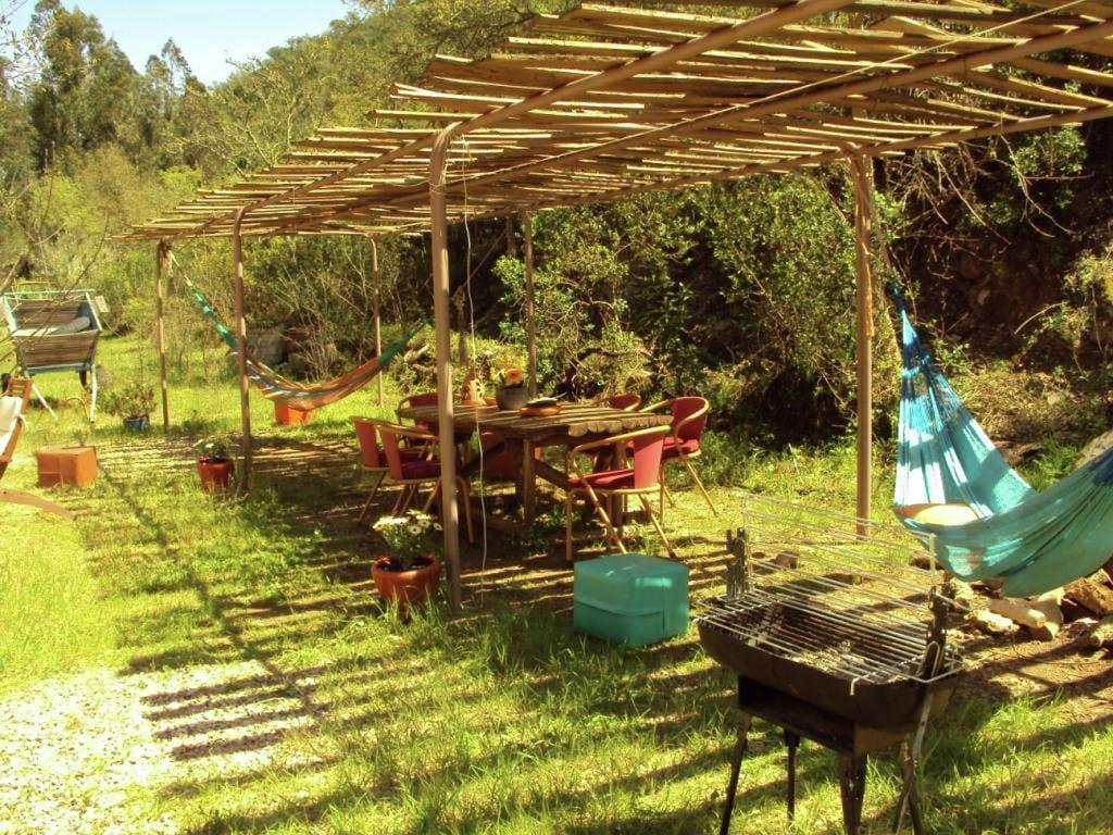 Ferienhaus Wunderbares Cottage in São Luís mit Grill (308948), Odemira, Costa Vicentina, Alentejo, Portugal, Bild 21