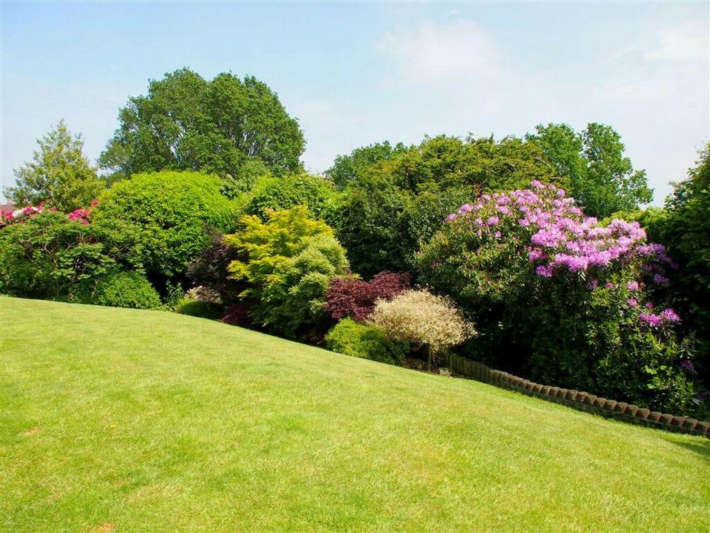 Ferienhaus Cleeve Lodge (311881), Crowborough, Sussex - Brighton, England, Grossbritannien, Bild 16